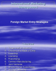 Project on Foreign Market Entry Strategies