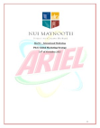 Global Marketing Strategy on Ariel and Tide