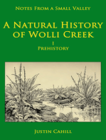 Notes from a Small Valley A Natural History of Wolli Creek I Prehistory