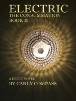 Electric, The Consummation, Book II