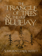 The Traiangle of Trees and the Old Blue Jay