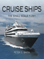 Cruise Ships The Small Scale Fleet