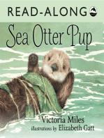 Sea Otter Pup Read-Along