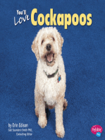 You'll Love Cockapoos