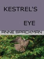 Kestrel's Eye