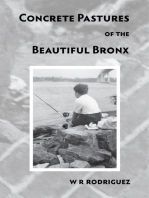 Concrete Pastures of the Beautiful Bronx