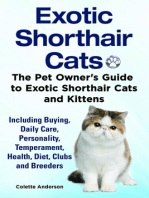 Exotic Shorthair Cats The Pet Owner's Guide to Exotic Shorthair Cats and Kittens Including Buying, Daily Care, Personality, Temperament, Health, Diet, Clubs and Breeders