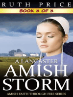 A Lancaster Amish Storm - Book 3