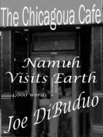 Namuh Visits Earth