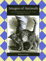 Images Of Animals
