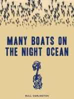 Many Boats on the Night Ocean