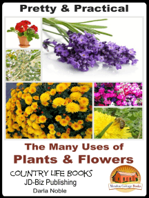 Pretty & Practical: The Many Uses of Plants & Flowers