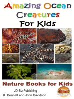 Amazing Ocean Creatures For Kids