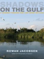 Shadows on the Gulf