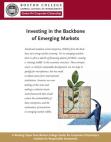Marketing Study on Emerging Markets