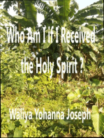 Who Am I If I Have Received The Holy Spirit?