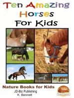 Ten Amazing Horses For Kids
