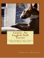 Gracie an English Bull Terrier