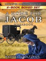 A Lancaster Home for Jacob 5-Book Boxed Set Bundle: A Lancaster Home for Jacob Boxed Sets, #1