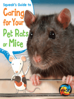 SqueakÕs Guide to Caring for Your Pet Rats or Mice