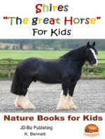 "Shires ""The Great Horse"" For Kids"