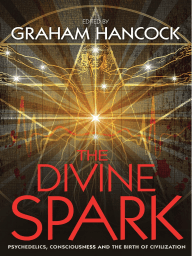 The Divine Spark (Extract) - Graham Hancock (ed)