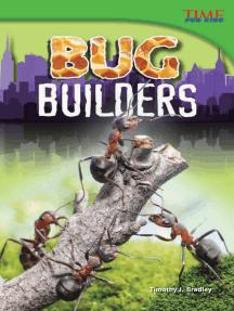 Bug Builders