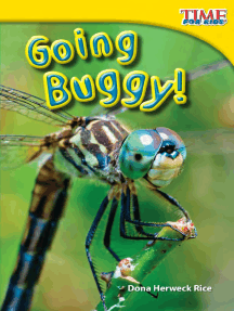 Going Buggy!