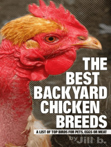 The Best Backyard Chicken Breeds: A List of Top Birds for Pets, Eggs and Meat