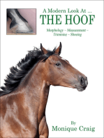 A Modern Look at the Hoof