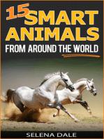 15 Smart Animals From Around The World