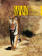 Land of the Striped Stalker: Wildlife of Madhya Pradesh