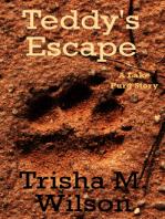 Teddy's Escape