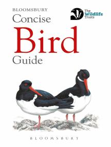 Concise Bird Guide