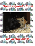 Home Squeak Home