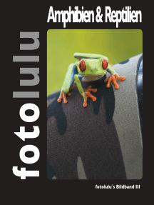 Amphibien & Reptilien: fotolulu's Bildband 3