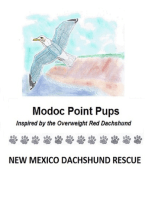 Modoc Point Pups
