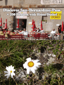 Discover San-Bernardino-Pass: + 250 Pictures with Heinz Duthel