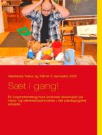 Sæt i gang!: En inspirationsbog med konkrete eksempler på natur- og værkstedsaktiviteter i det pædagogiske arbejde.