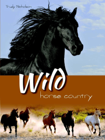 Wild Horse Country: White Cloud Station, #3