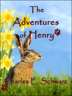 The Adventures of Henry