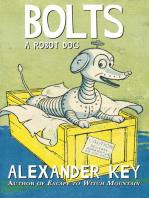 Bolts: A Robot Dog