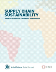 Study Project on Supply Chain Sustainability