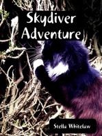 Skydiver Adventure