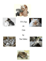 TT's Tips on Cats