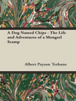 A Dog Named Chips - The Life and Adventures of a Mongrel Scamp