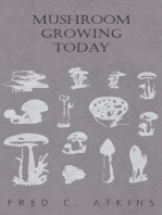 Mushroom Growing Today