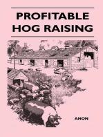 Profitable Hog Raising