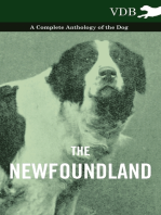 The Newfoundland - A Complete Anthology of the Dog