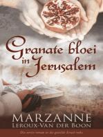 Granate bloei in Jerusalem